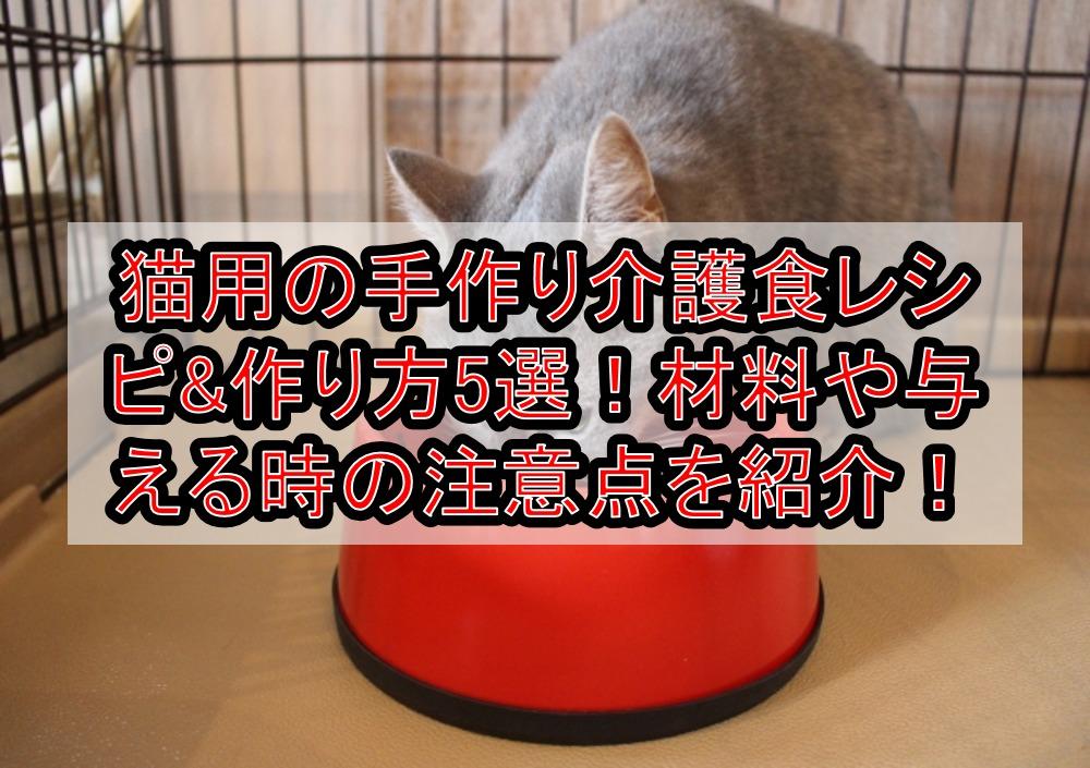猫用の手作り介護食レシピ&作り方5選!材料や与える時の注意点を紹介!