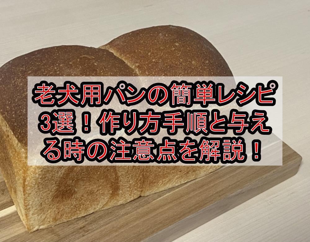 老犬用パンの簡単レシピ3選!作り方手順と与える時の注意点を徹底解説!