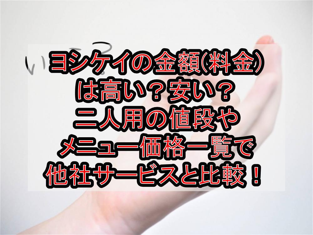 ヨシケイの金額(料金)は高い?安い?二人用の値段やメニュー価格一覧で他社サービスと徹底比較!
