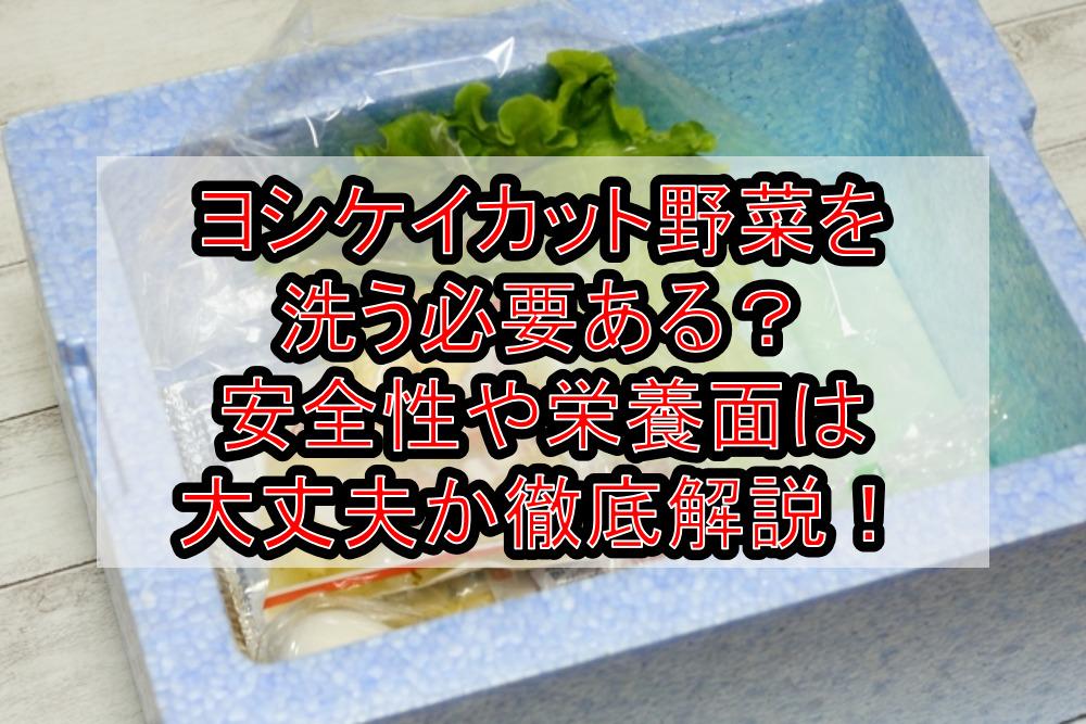 ヨシケイカット野菜を洗う必要ある?安全性や栄養面は大丈夫か徹底解説!