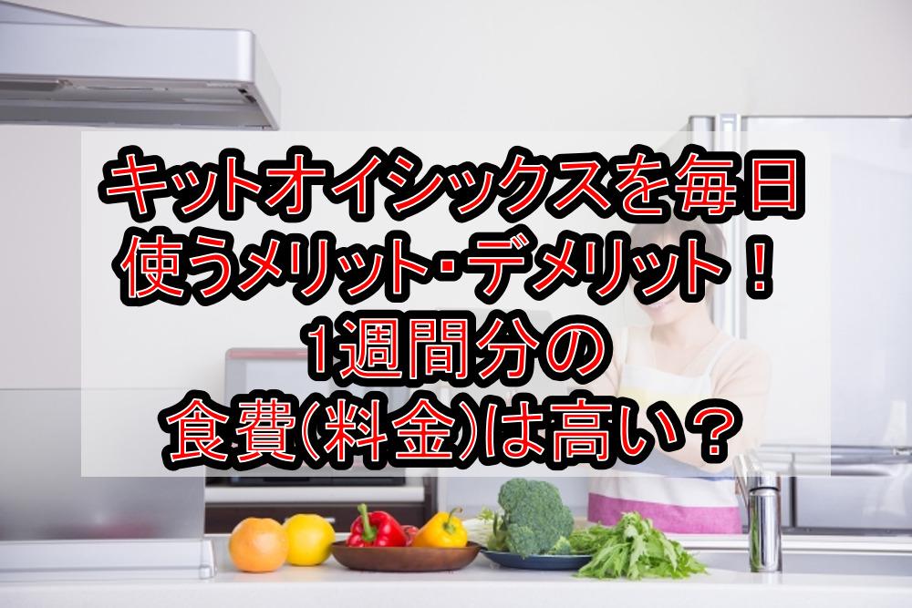 キットオイシックスを毎日使うメリット・デメリットまとめ!1週間分の食費(料金)は高い?